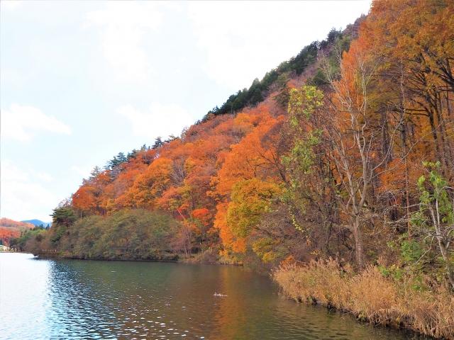 木崎湖はこれから紅葉シーズンへ!